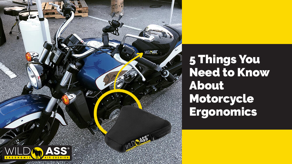 5 Things You Need to Know About Motorcycle Ergonomics