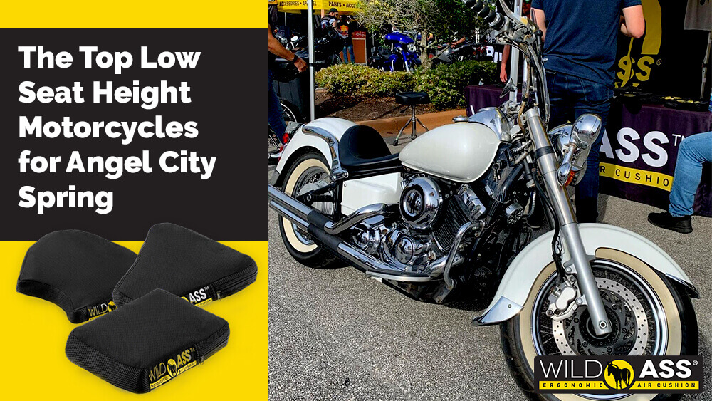 The Top Low Seat Height Motorcycles for Angel City Spring Motorcycle Rally 2021